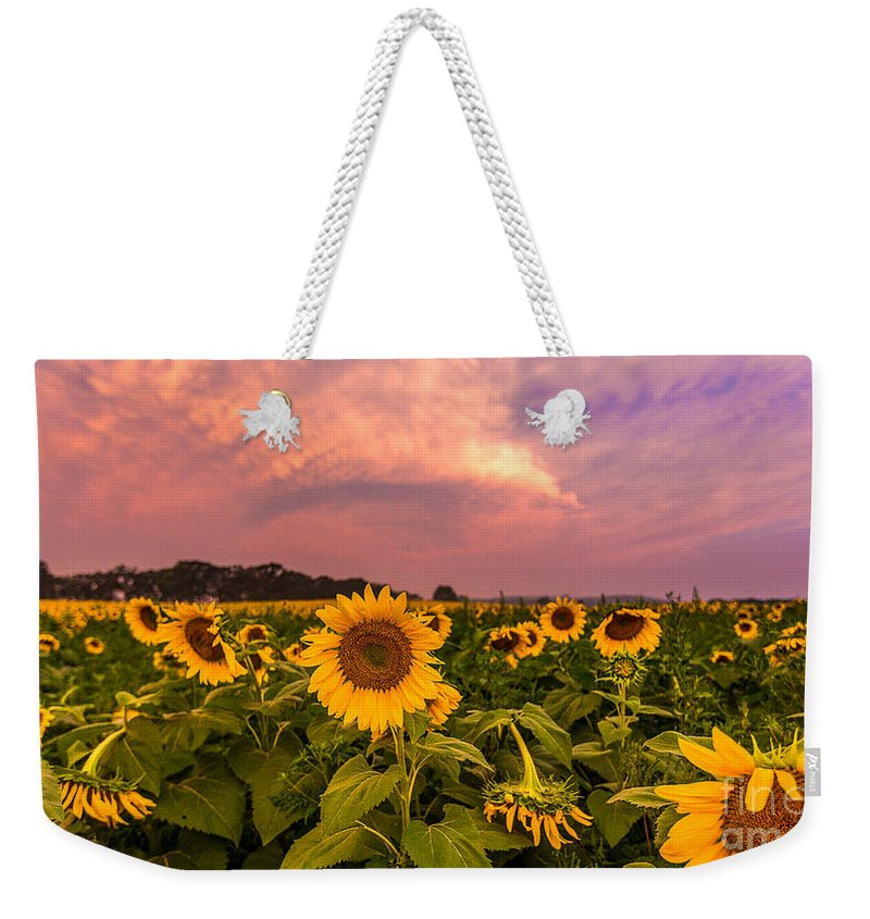 Clouds Weekender Tote Bag featuring the photograph Morning View by Andrew Slater