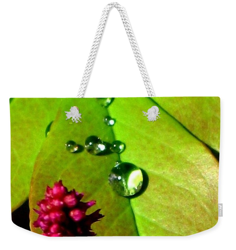 Floral Weekender Tote Bag featuring the photograph Morning's Glory by Marla McFall