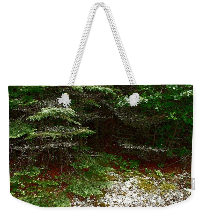 Forest Weekender Tote Bag featuring the photograph Moss And Lichen by Joanne Smoley