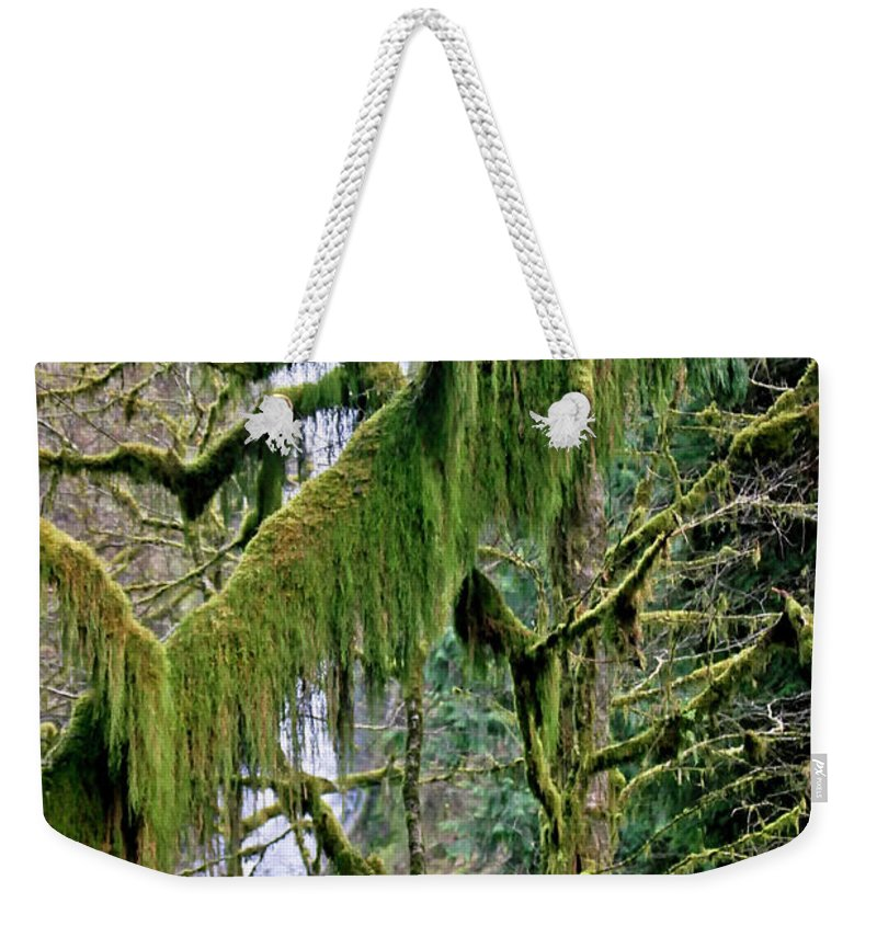 Moss Weekender Tote Bag featuring the photograph Moss At Munson Creek by Albert Seger