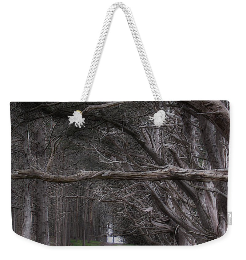 Landscape Weekender Tote Bag featuring the photograph Moss Beach Trees 4191 by Karen W Meyer