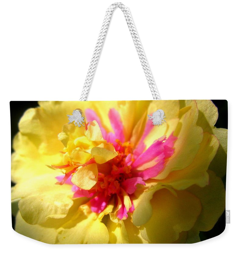 Moss Rose Weekender Tote Bag featuring the photograph Moss Rose by Brittany Horton