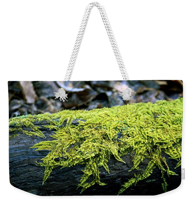 Moss Weekender Tote Bag featuring the photograph Mosss On Blackened Log by Douglas Barnett
