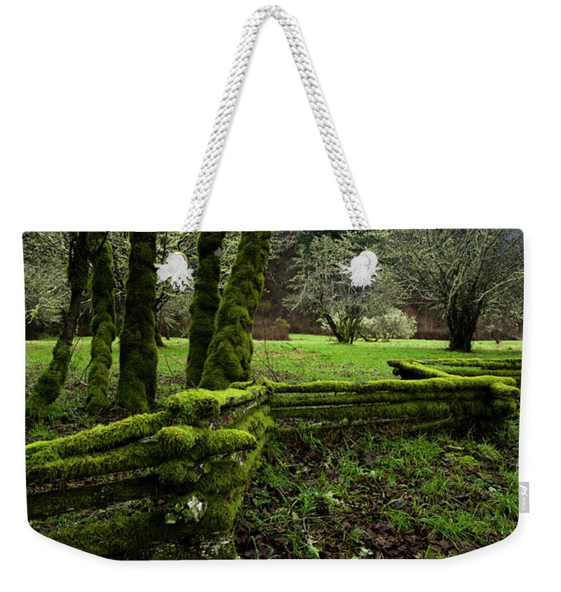 Moss Weekender Tote Bag featuring the photograph Mossy Fence 2 by Bob Christopher