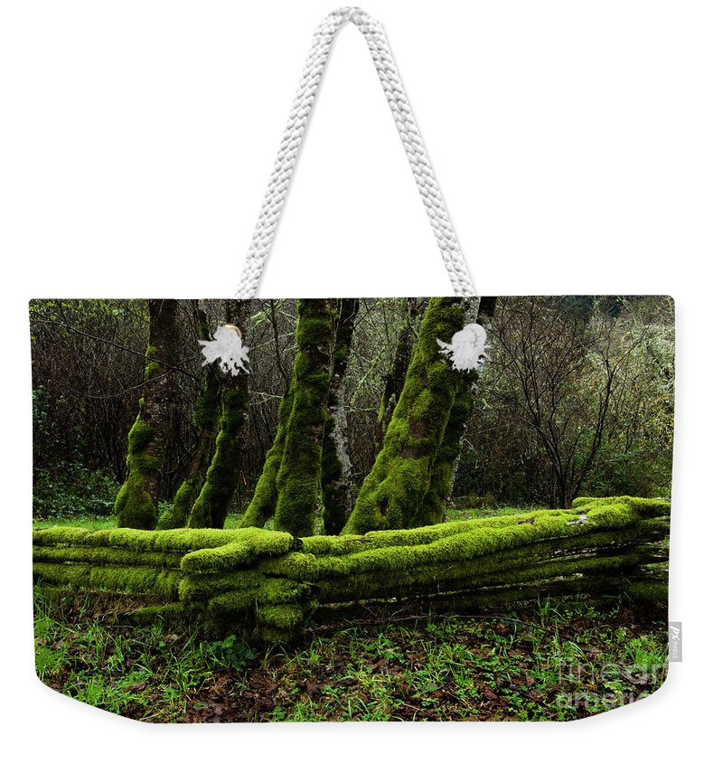 Moss Weekender Tote Bag featuring the photograph Mossy Fence 3 by Bob Christopher
