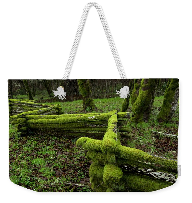 Moss Weekender Tote Bag featuring the photograph Mossy Fence 4 by Bob Christopher