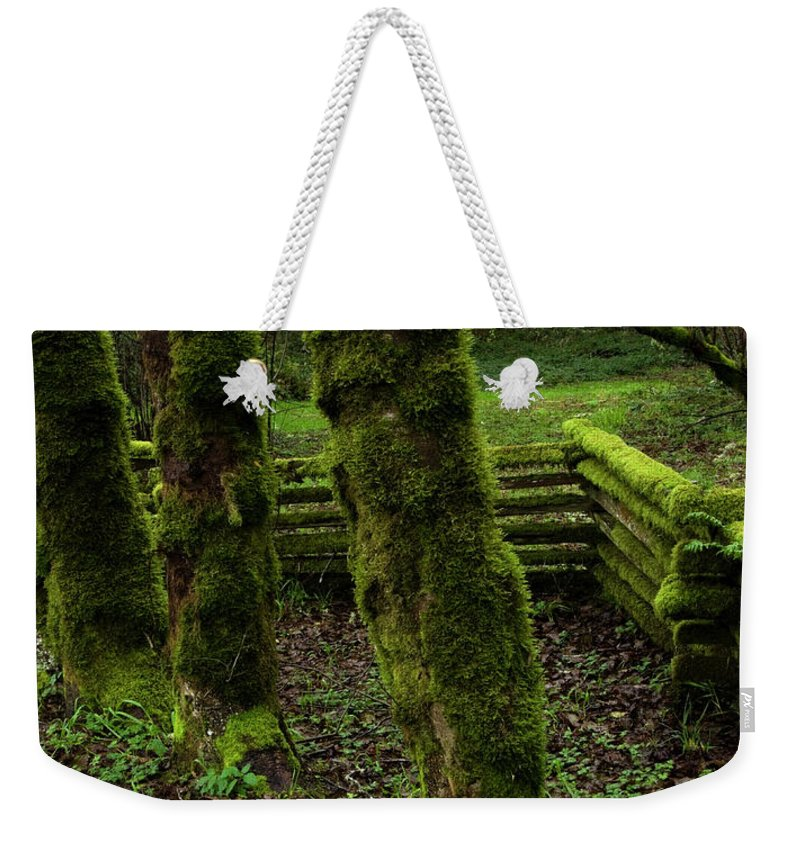 Moss Weekender Tote Bag featuring the photograph Mossy Fence by Bob Christopher