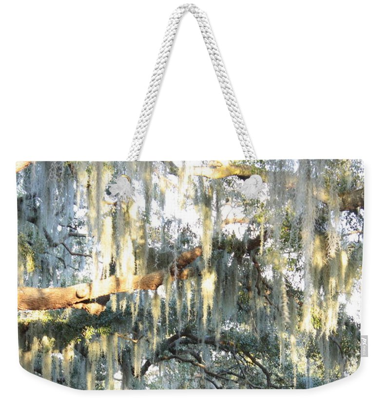 Spanish Moss Weekender Tote Bag featuring the photograph Mossy Live Oak by Carol Groenen