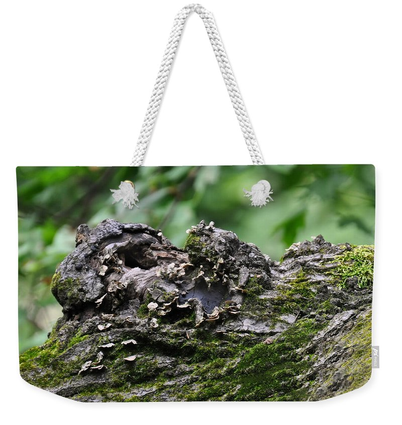 Tree Weekender Tote Bag featuring the photograph Mossy Tree Knot by Chris Flees