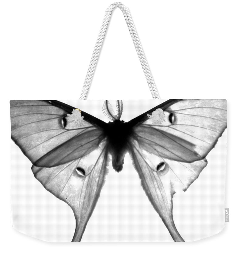 Moth Weekender Tote Bag featuring the photograph Moth by Amanda Barcon