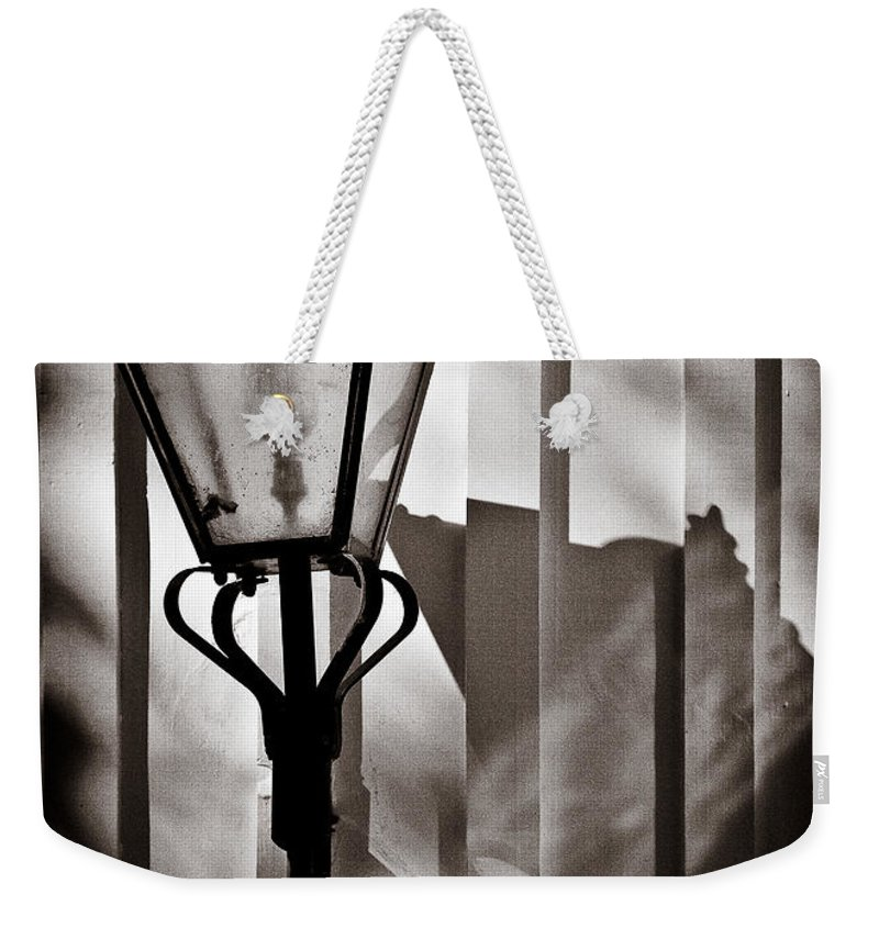 Moth Weekender Tote Bag featuring the photograph Moth And Lamp by Dave Bowman