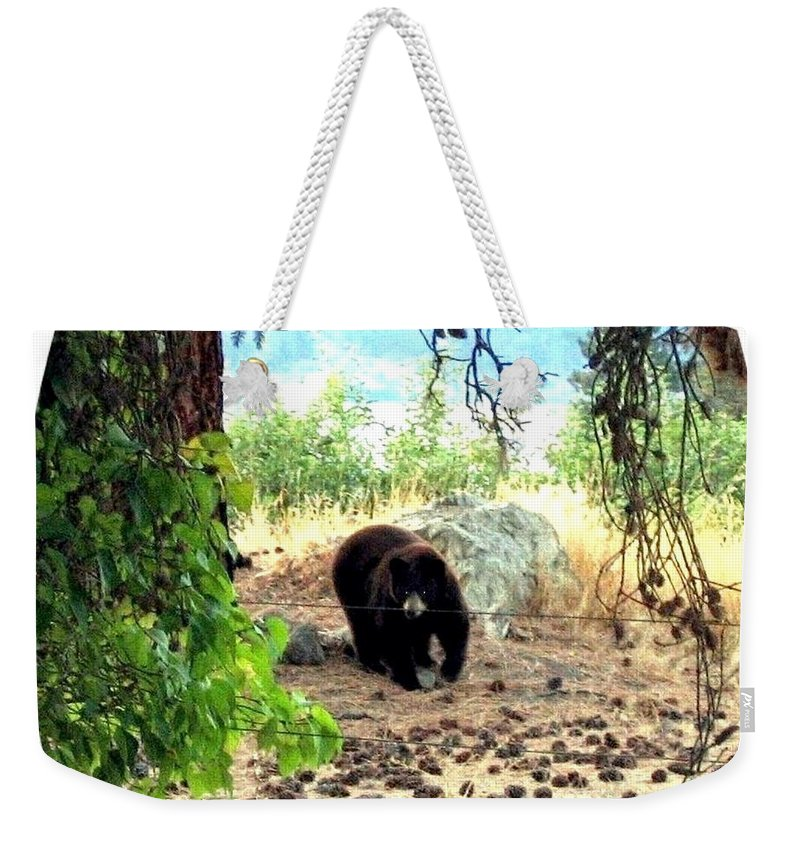 Bear Weekender Tote Bag featuring the photograph Mother Bear by Will Borden