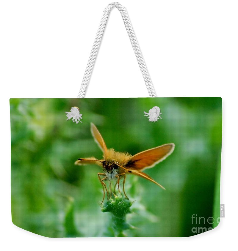 Landscape Weekender Tote Bag featuring the photograph Mothera by David Lane