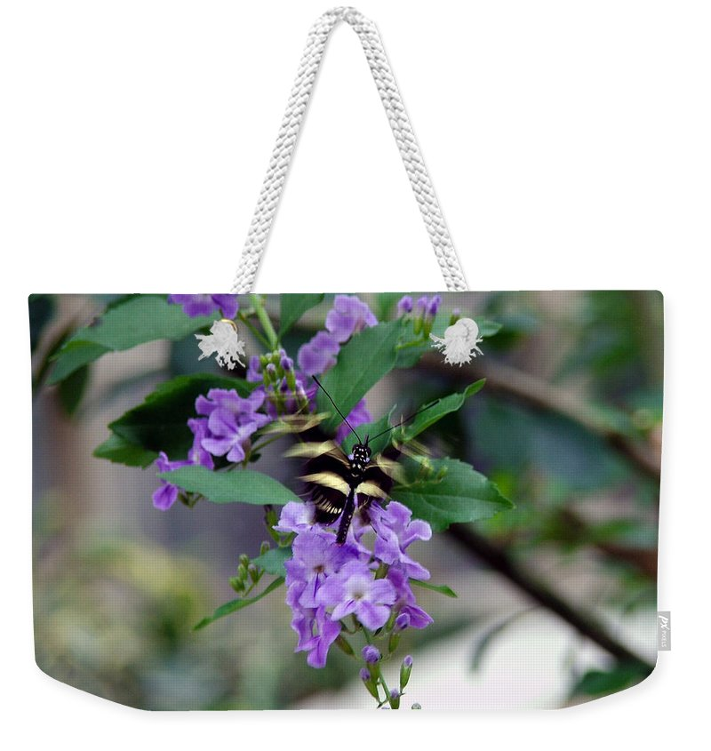 Butterfly Weekender Tote Bag featuring the photograph Motion by Robert Meanor