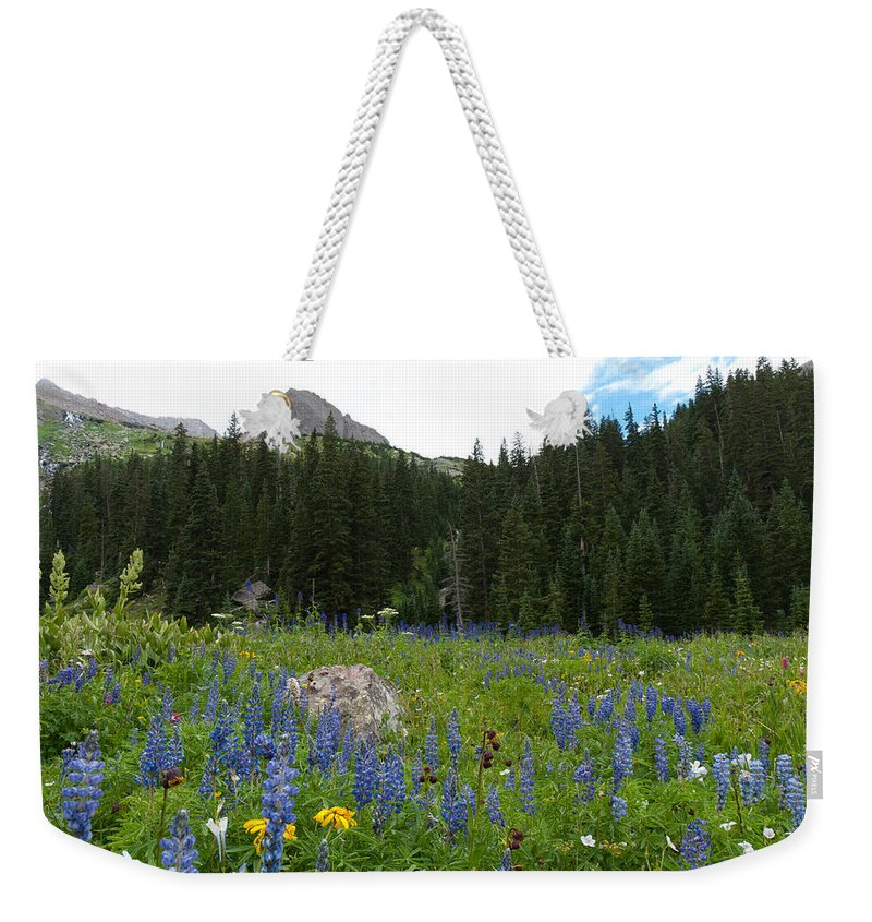 Blue Lake Weekender Tote Bag featuring the photograph Mount Sneffels Lupine Landscape by Cascade Colors