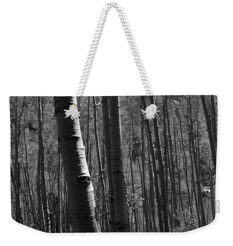 Mountains Weekender Tote Bag featuring the photograph Mountain Aspens by David Lee Thompson