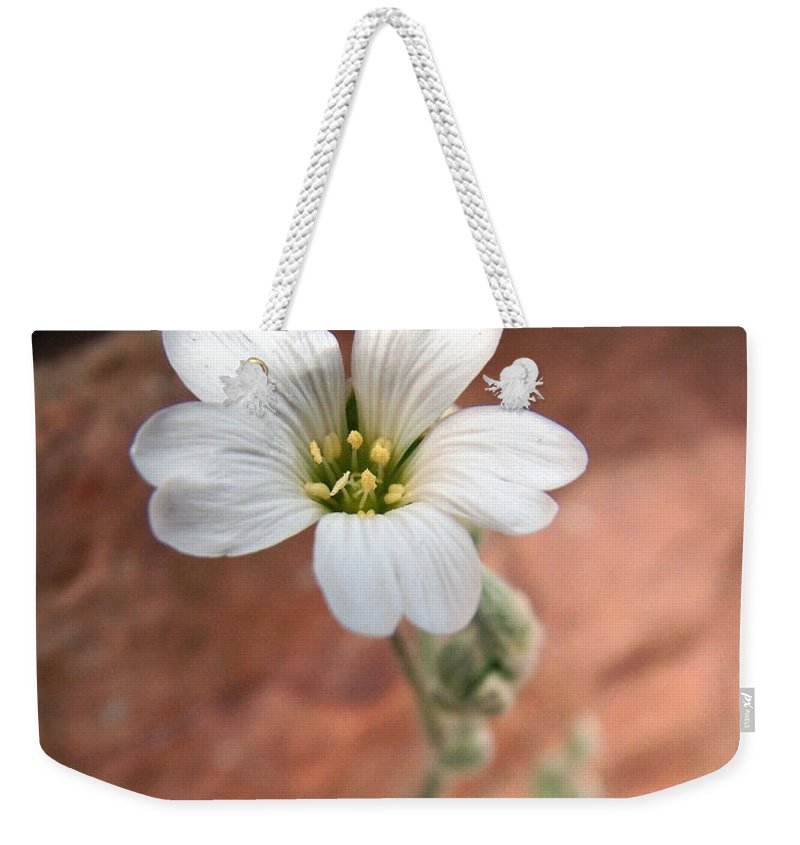 Alpine Weekender Tote Bag featuring the photograph Mountain Beauty by RC DeWinter