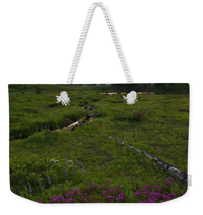 Rainier Weekender Tote Bag featuring the photograph Mountain Heather Sunset by Mike Dawson