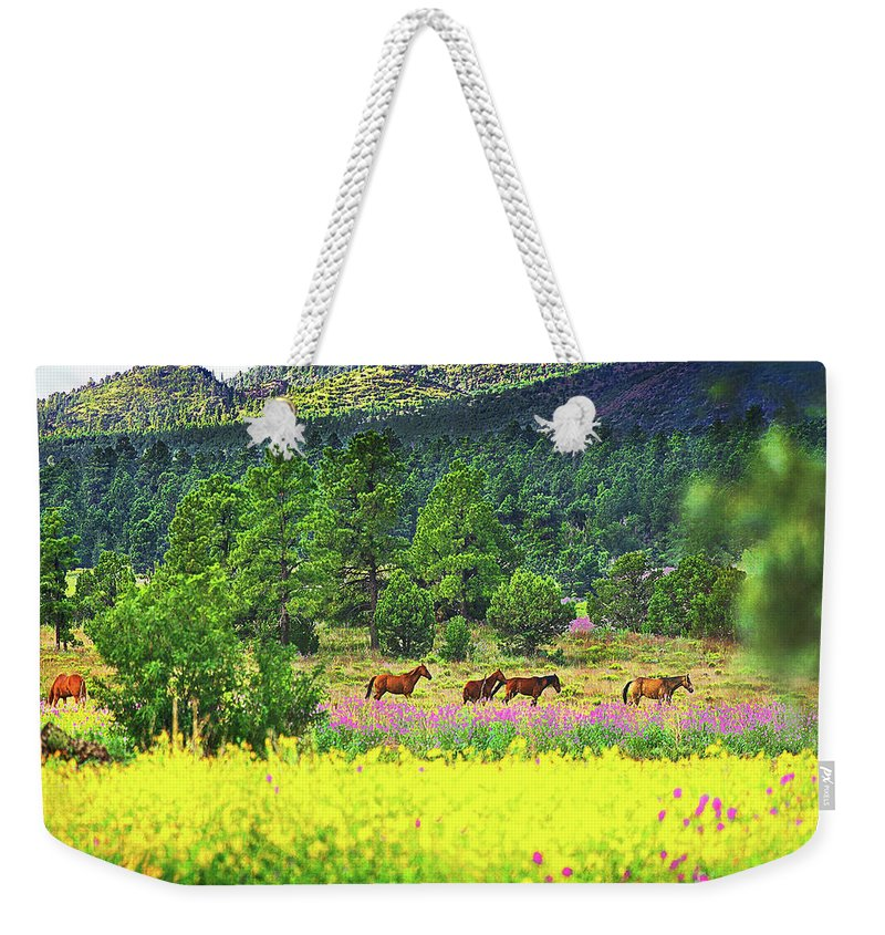 Weekender Tote Bag featuring the photograph Mountain Horses by Don Schimmel