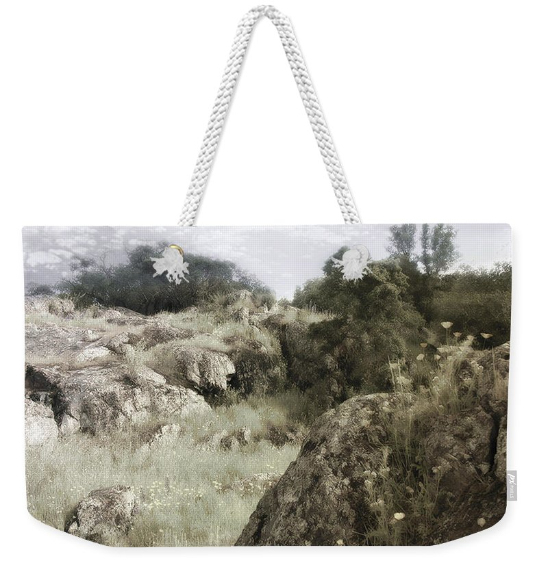 Landscape Weekender Tote Bag featuring the photograph Mountain Lion Country by Karen W Meyer