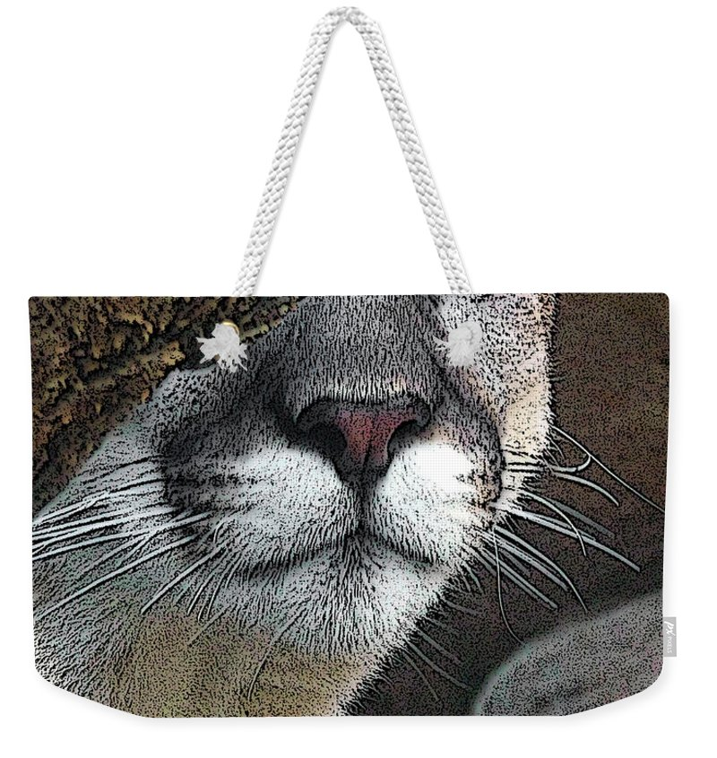 Big Cats Weekender Tote Bag featuring the photograph Mountain Lion by Ernie Echols