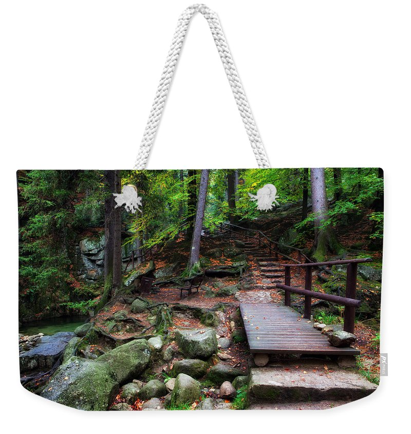 Trail Weekender Tote Bag featuring the photograph Mountain Trail With Staircase In Autumn Forest by Artur Bogacki