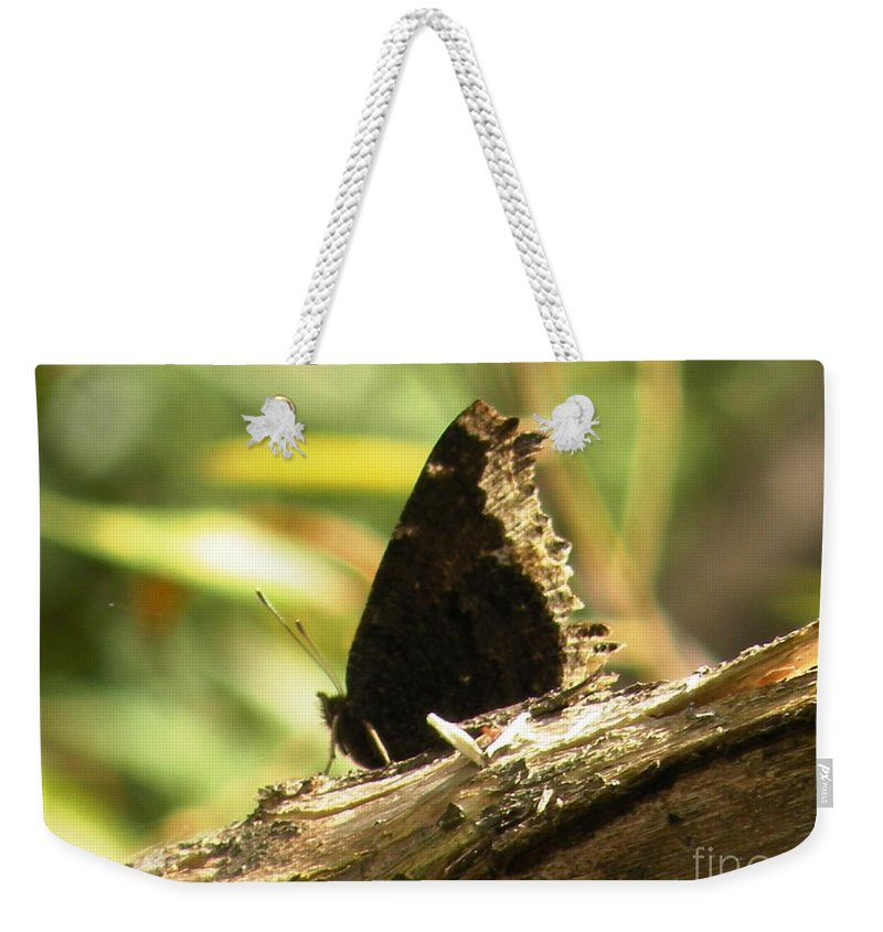Mourning Weekender Tote Bag featuring the photograph Mourning Cloak Butterfly by Joanne Young