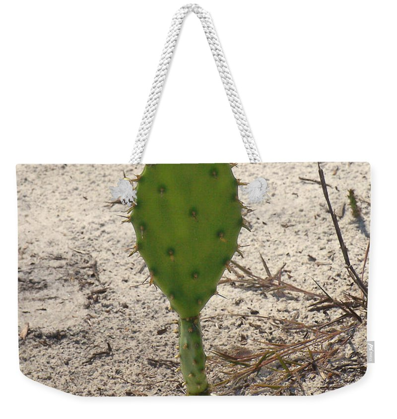 Nature Weekender Tote Bag featuring the photograph Mouse by Peg Urban