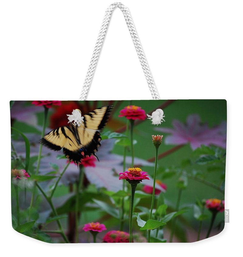 Butterfly Weekender Tote Bag featuring the photograph Move On. by Robert Meanor