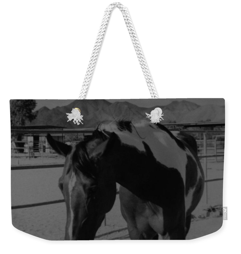 Black And White Weekender Tote Bag featuring the photograph Mr Ed In Black And White by Rob Hans