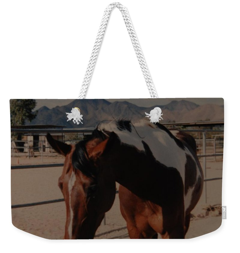 Horse Weekender Tote Bag featuring the photograph Mr Ed by Rob Hans