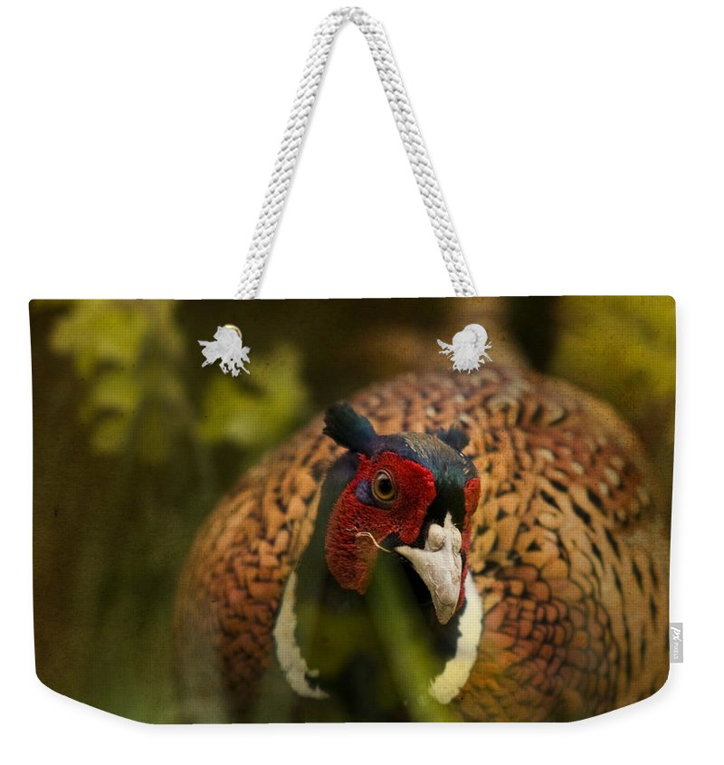 Pheasant Weekender Tote Bag featuring the photograph Mr Spring by Angel Ciesniarska