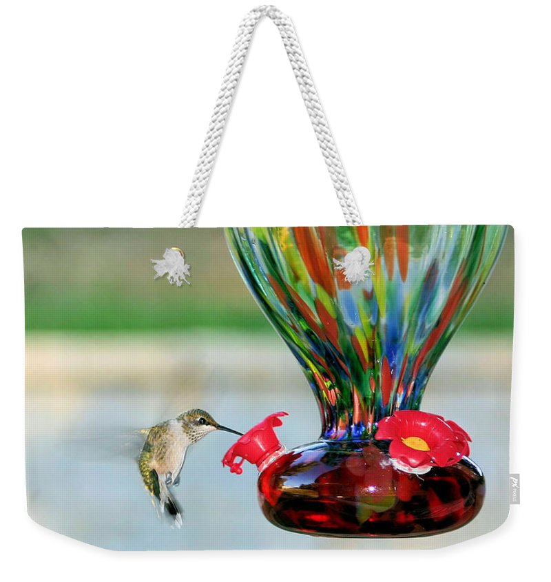 Hummingbird Weekender Tote Bag featuring the photograph Mrs. Hummer by Kristin Elmquist