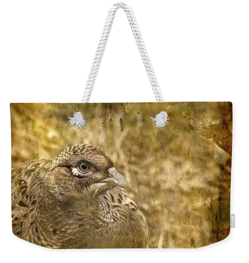 Pheasant Weekender Tote Bag featuring the photograph Mrs Pheasant by Angel Ciesniarska