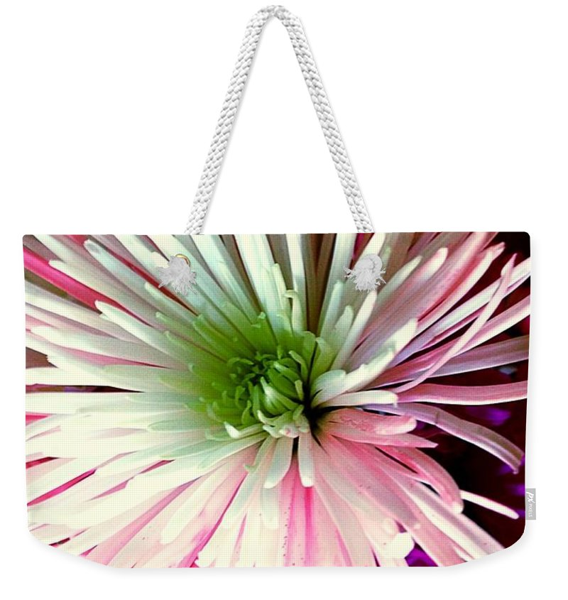 Pink Weekender Tote Bag featuring the photograph Multi Color Aster by Debra Lynch