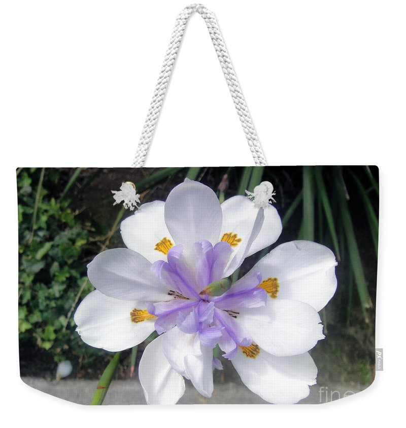 Rare Form Weekender Tote Bag featuring the photograph Multi-petal White Iris Flower. Very Unusual, Rare Form by Sofia Metal Queen