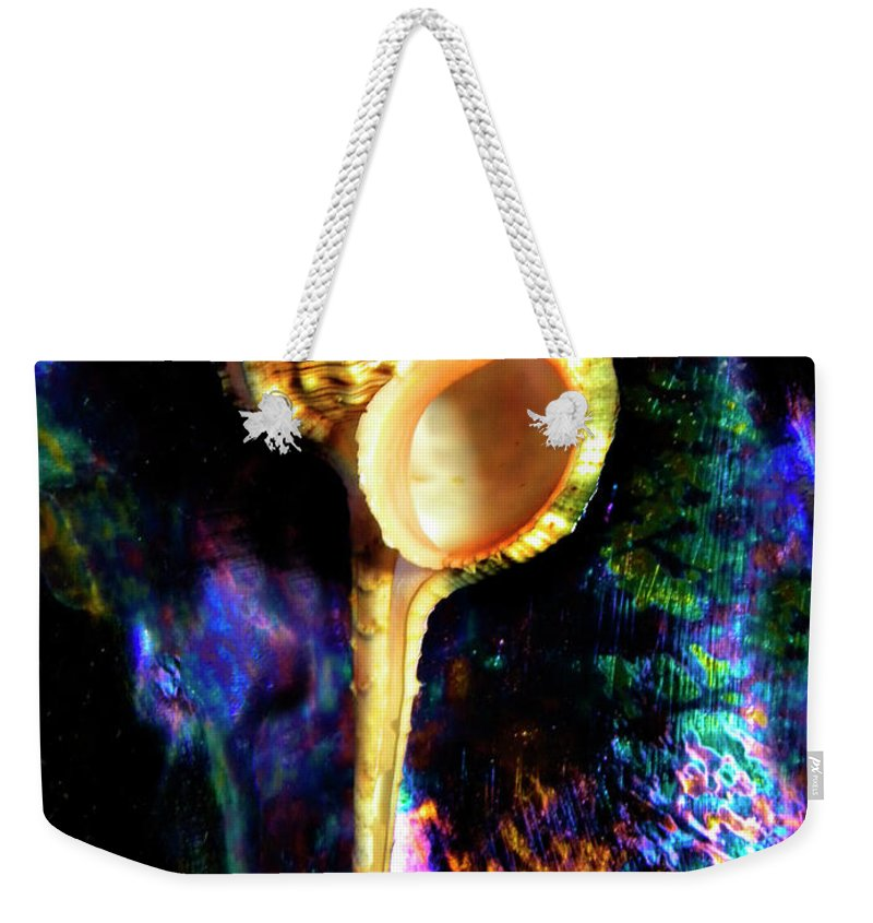Frank Wilson Weekender Tote Bag featuring the photograph Murex Haustellum Seashell by Frank Wilson