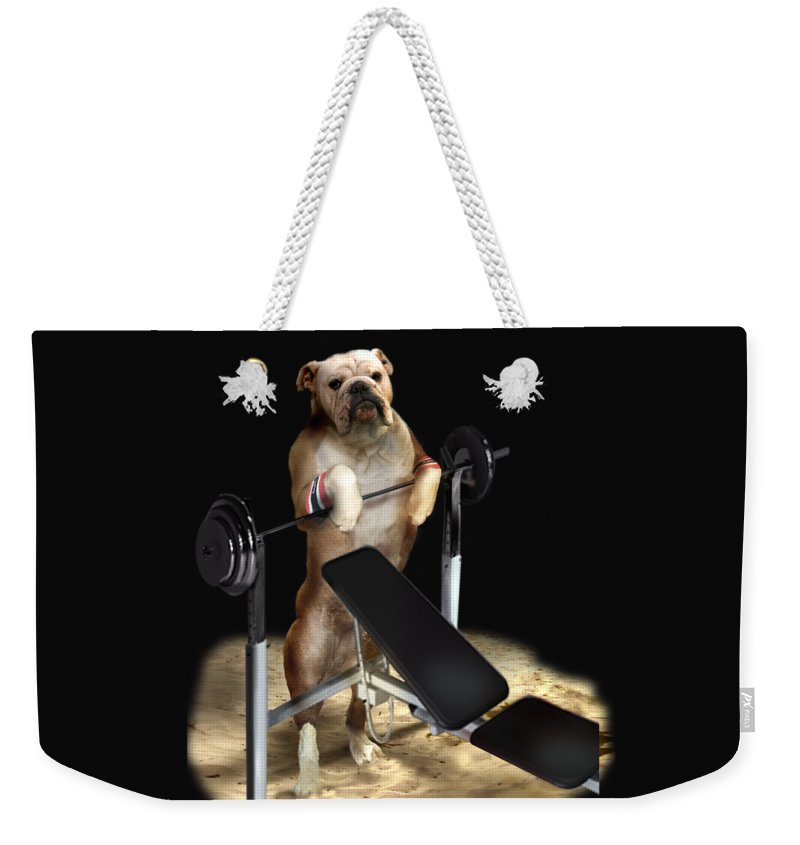 Pet Picture Dog Lifting Weights Print Weekender Tote Bag featuring the painting Muscle boy Boxer lifting weights by Regina Femrite