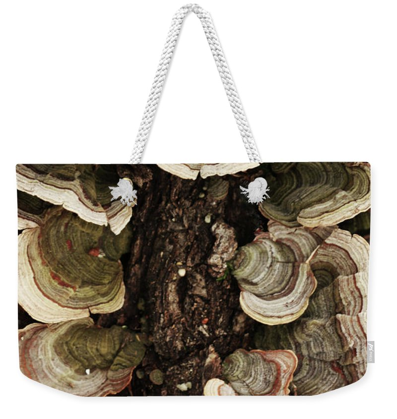 Mushroom Photography Weekender Tote Bag featuring the photograph Mushroom Shells By The Lake Shore by Kim Henderson