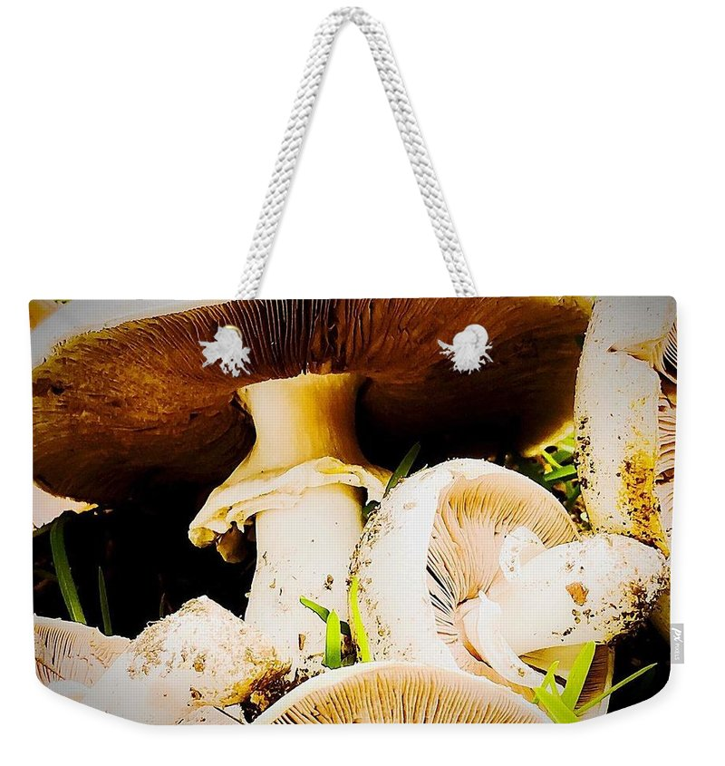 Weekender Tote Bag featuring the photograph Mushrooms by Lisa Anne Warren