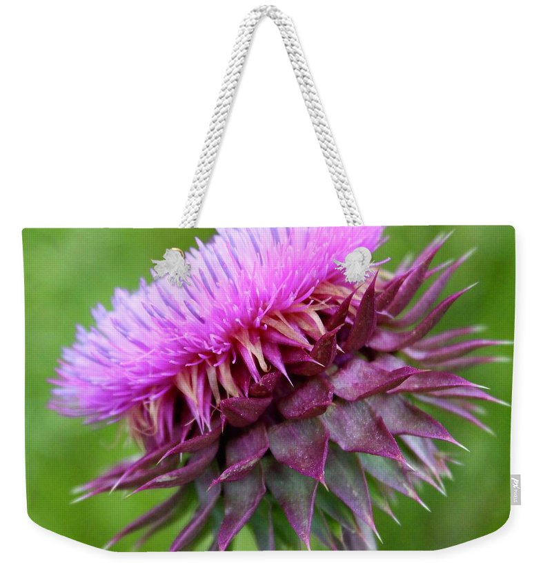 Photograph Weekender Tote Bag featuring the photograph Musk Thistle Blooming by Mandy Elliott
