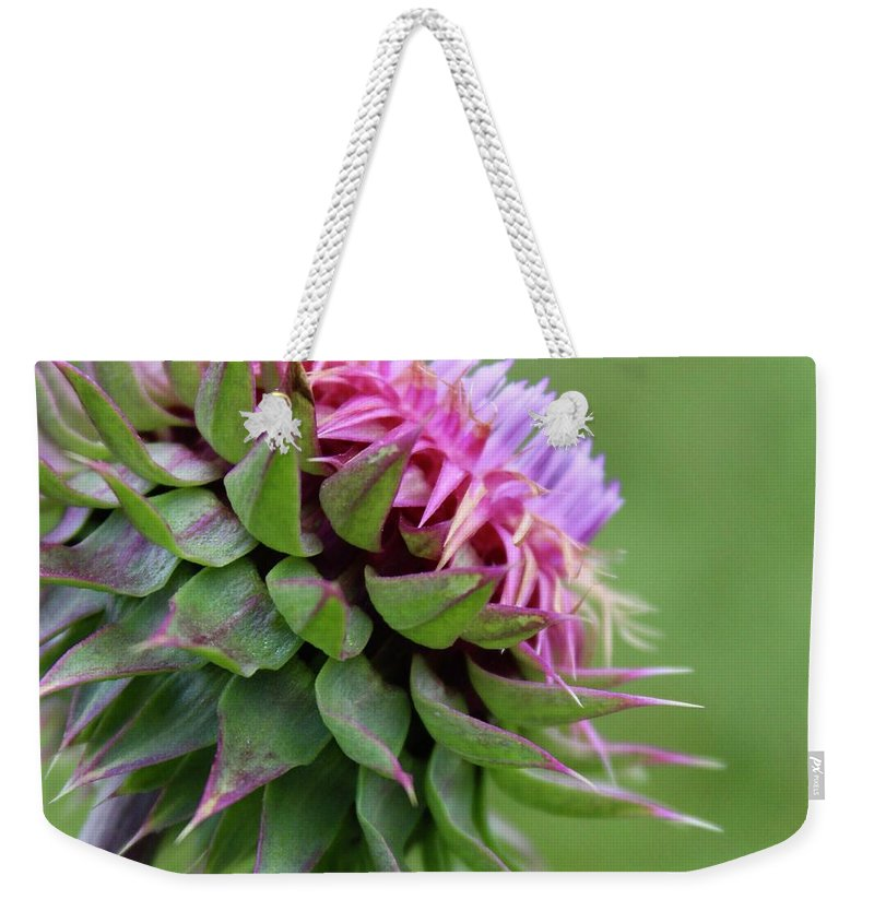 Photograph Weekender Tote Bag featuring the photograph Musk Thistle In Bloom by Mandy Elliott