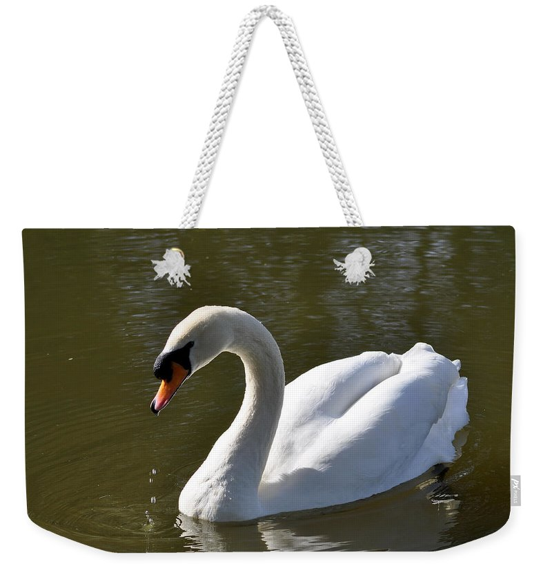 Outdoors Weekender Tote Bag featuring the photograph Mute Swan On Rolleston Pond by Rod Johnson