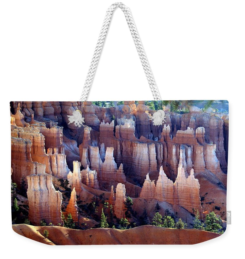 Southwest Art Weekender Tote Bag featuring the photograph Muted Bryce by Marty Koch