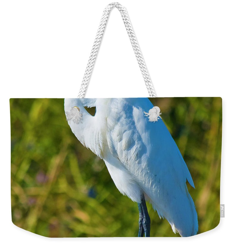 Great White Egret Weekender Tote Bag featuring the photograph My Better Side by Betsy Knapp