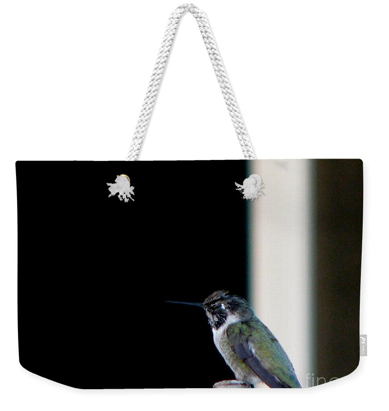 Patzer Weekender Tote Bag featuring the photograph My Friend Stop By by Greg Patzer