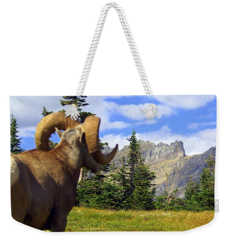 Glacier National Park Weekender Tote Bag featuring the photograph My Kingdom by Marty Koch
