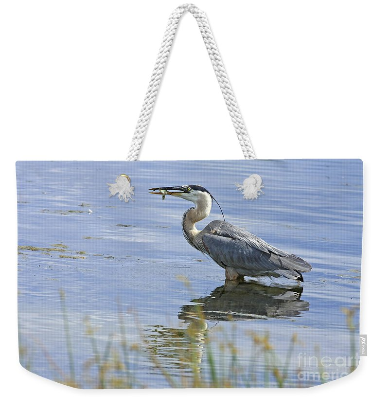 Heron Weekender Tote Bag featuring the photograph My Late Afternoon Treat by Deborah Benoit