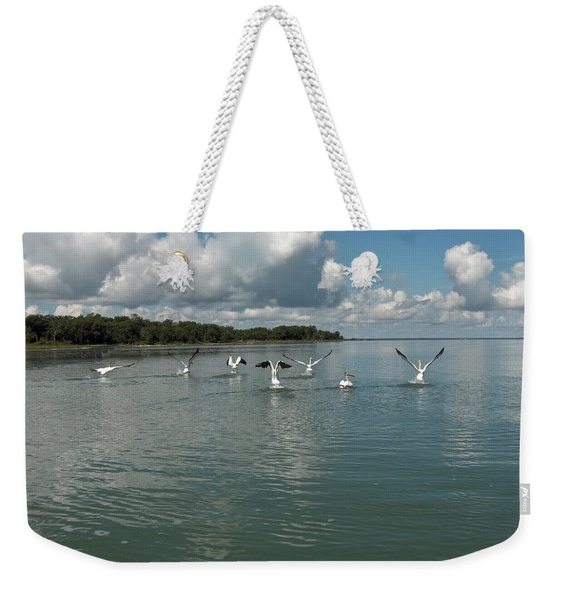 Pelicans Lake Water Trees Shore Beach Clouds Birds Water Foul Weekender Tote Bag featuring the photograph My Pelicans by Andrea Lawrence