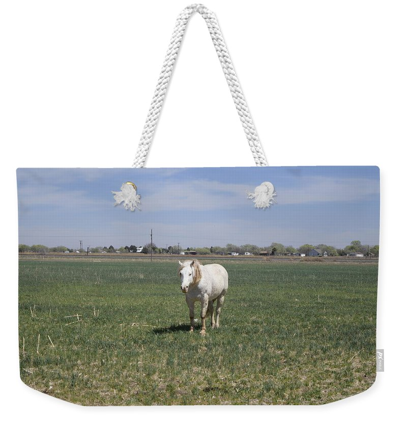 Horse Weekender Tote Bag featuring the photograph My White Knight by Charla Harrison